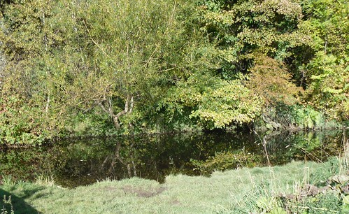 Water Of Leith 2
