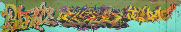 Raid Hyks Tome