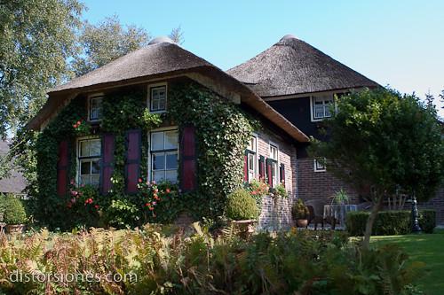 La casa con la enredadera en su fachada