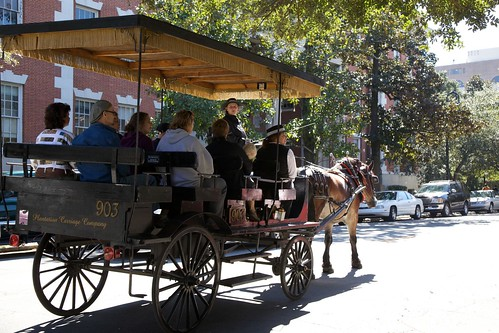 Savannah horse & buggy tour