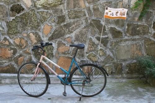 stegulet bicicleta