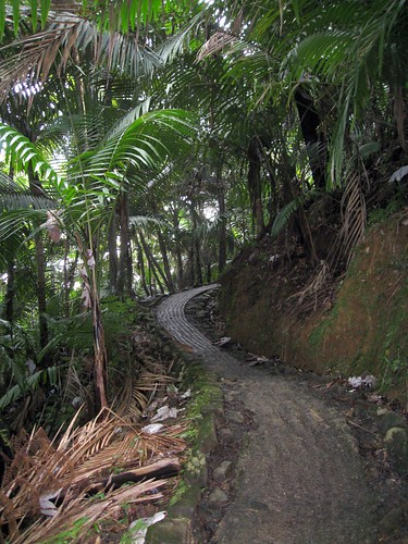 the trail to la mina