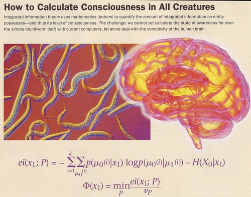 How to calculate consiousness
