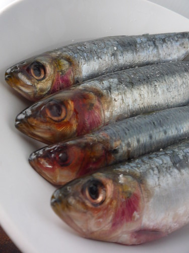 Sardines by you.