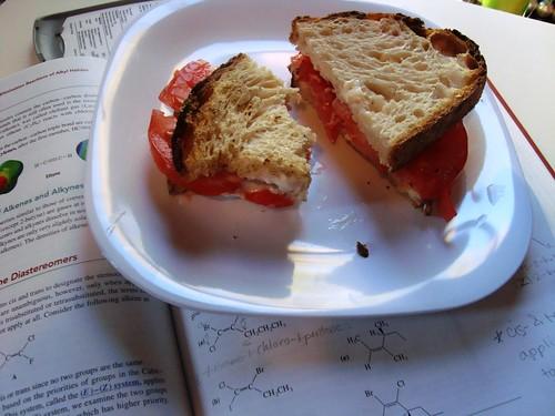 Tomato Sandwich + Organic Chemistry