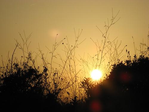 Puest de sol