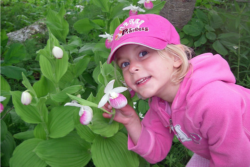 Sophia & The MN State Flower - Lady Slipper