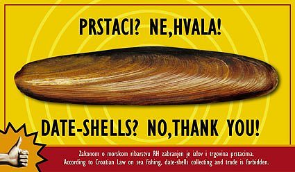 The government camapign for protecting our date-shells
