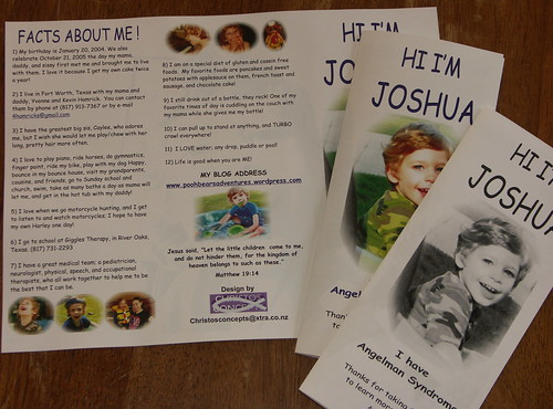 Joshua's printed brochures! BEAUTIFUL!