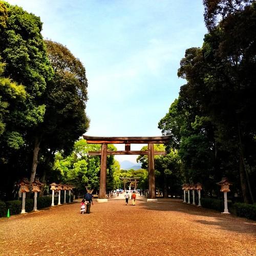 橿原神宮、鳥居をくぐったところ。昨日撮った写真だけど…。#afternoon