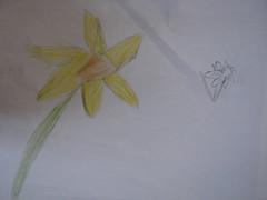 HE Drawing Music 013