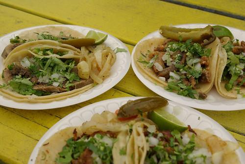 Mount Vernon taco crawl