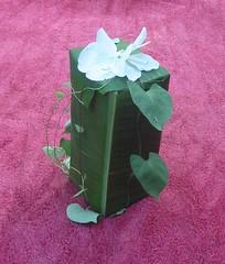 Sustainable Gift