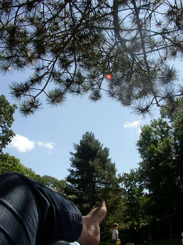 thrune park 5