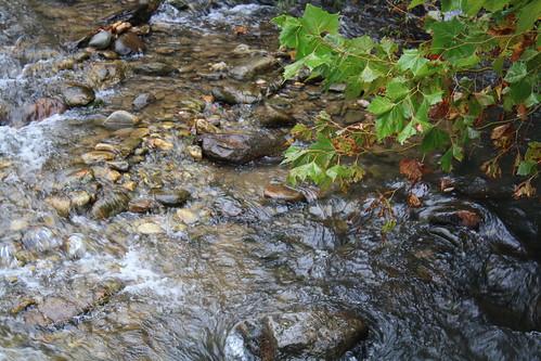 Broad River at Chimney Rock