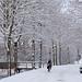 En bicicleta por la nieve