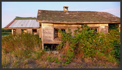 Abandoned buildings on a working organic farm, Sequim, WA.