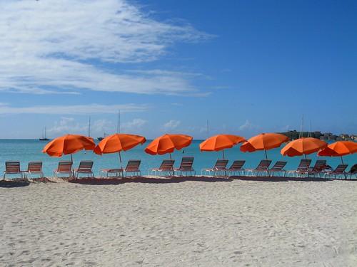 umbrellas (347/365)