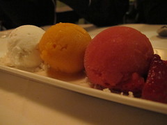 Homemade Sorbet