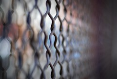 bokeh link fence