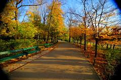 Parcul Cişmigiu, Bucureşti, România