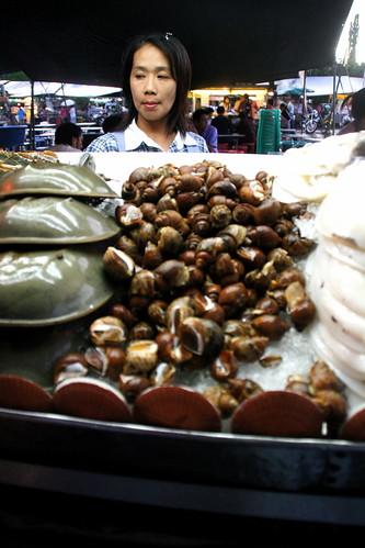 Snails were first