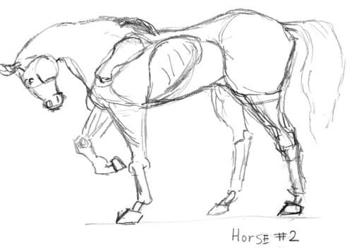 Horse skeleton, part 2