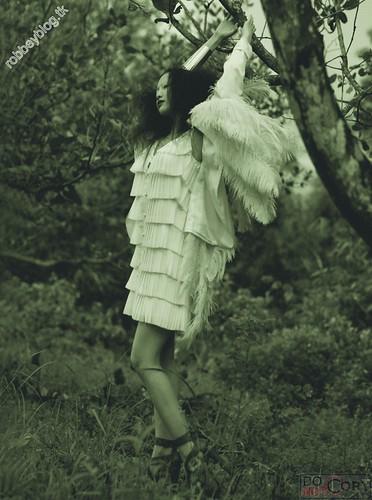 Like a bird - DMC (9)