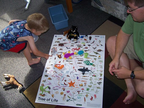 Filling in the Tree of Life
