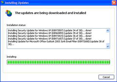 Microsoft Windows Updates