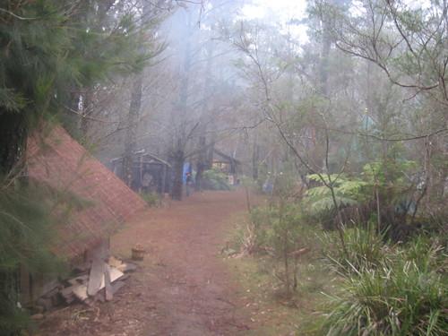 Path to village