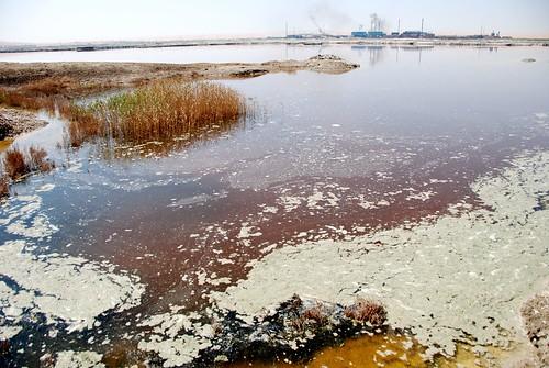 Water pollution in China by Bert van Dijk.