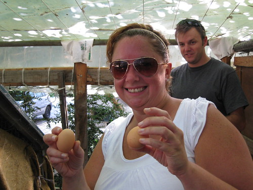Laura Finds Two Eggs in the Chicken Coup
