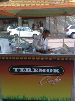 Teremok Cafe
