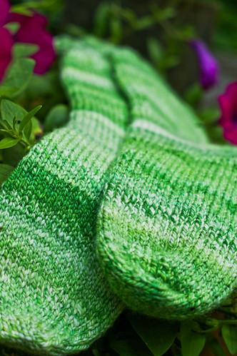 sock hop toesies