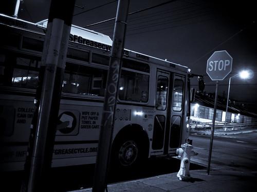 My Favorite Bus Stop