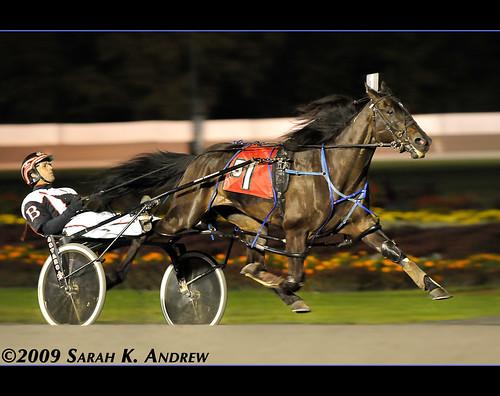 Harness Racing at Saratoga Raceway
