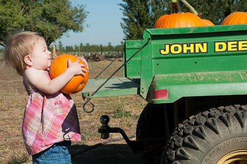 Pumpkin Helper