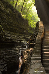 Still Climbing - Watkins Glen's Gorge, August 2009