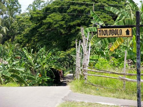 Molobolo, Tuburan by you.