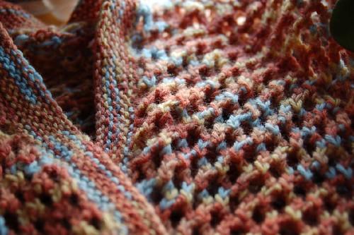 Shetland Shorty close-up