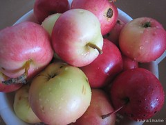 Apples from Kangasala