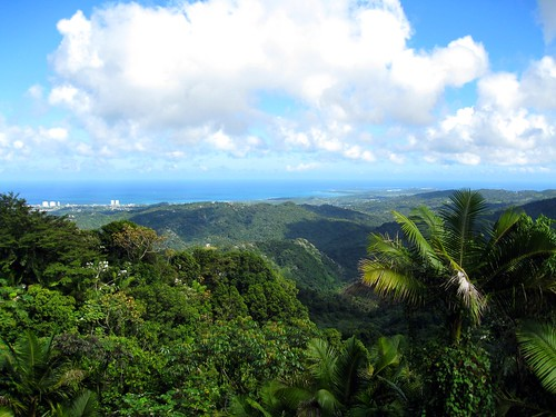 the view from yokahu tower
