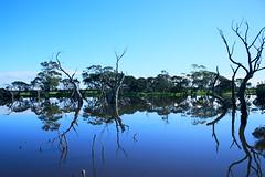 Lake View 02