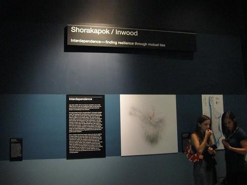 exhibit shot