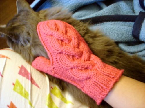 1st mitten