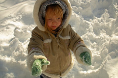 Snowfall 122009 (5)