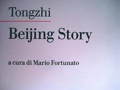 """Beijing Story, di Tongzhi, Nottetempo 2009, Dario e Fabio Zannier (progetto grafico), Copertina di Dario Zannier, fotografia alla copertina: """"Girolamo P."""", © anonimo: part., 4"""