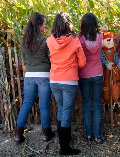 pumpkinpatch (1 of 1)-4