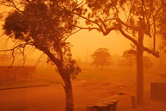 Dust storm in NSW